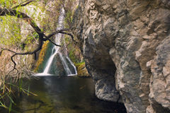 Darwin Falls in Death Valley. National Park, California Royalty Free Stock Images