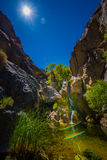 Darwin Falls Death Valley Vertical Composition Royalty Free Stock Images