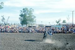 1976 Darwin, N T australië rodeo Stock Foto