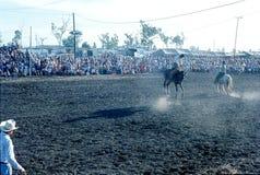 1976 Darwin, N T australië rodeo Stock Afbeelding