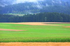 Ackerland in Österreich Lizenzfreies Stockbild