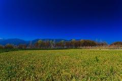 Das Ackerland unter dem schneebedeckten Berg, Stockfotografie
