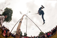 Das Akha-Schwingenfestival Stockbilder