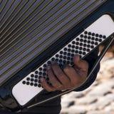 Das Akkordeon im Retiro spielend, parken Sie in der Stadt von Madrid Lizenzfreie Stockbilder