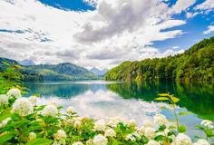 Das Alpsee ist ein See im Bayern, Deutschland Stockfotografie