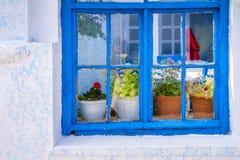 Das alte blaue Fenster mit Blumen auf dem Fensterbrett Stockbilder