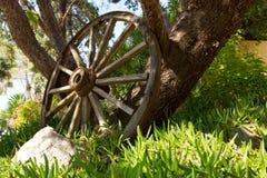 Das alte hölzerne Rad und der Baum stockfotos