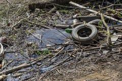 Das alte Rad vom Auto wird auf den Abfall nahe The Creek geworfen lizenzfreie stockfotografie