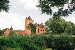 Das alte Schloss, das mit Kletterpflanzen bedeckt wird, steigt auf das Ufer O Stockbild