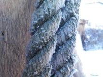 Das alte Seil Stockfoto