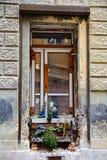 Das alte verfallene Fenster mit Vasen Blumen Lizenzfreies Stockbild