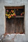 Das alte verschalte-oben Fenster in der Wand lizenzfreie stockbilder