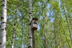 Das alte Vogelhaus Stockbilder