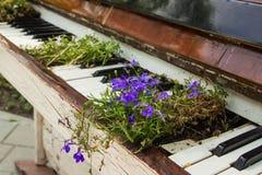 Das alte weiße Klavier mit Blumen Lizenzfreie Stockfotos