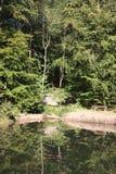 Das Ardenne am Standort La Roche in Belgien lizenzfreie stockbilder