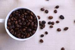 Das Aroma von Kaffeebohnen stockfotografie