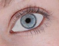 Das Auge Stockfotografie