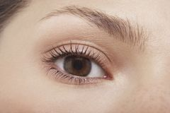 Das Auge der jungen Frau Stockfoto