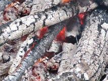 Das ausgestorbene Feuer Lizenzfreies Stockbild