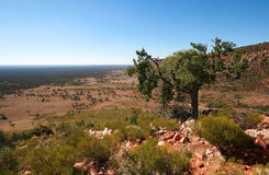 Das australische Hinterland Lizenzfreies Stockfoto