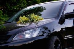 Das Auto in den Wiesen Stockbild
