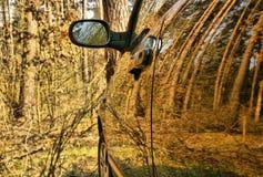 Das Auto im Wald Stockbilder