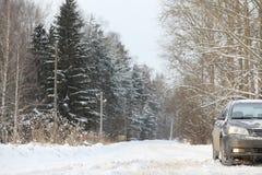 Das Auto ist auf der Straße in der Reise des Wald A zum Land grau Lizenzfreie Stockfotografie