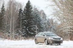 Das Auto ist auf der Straße in der Reise des Wald A zum Land grau Stockfotografie
