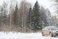 Das Auto ist auf der Straße in der Reise des Wald A zum Land grau Lizenzfreies Stockbild