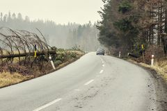 Das Auto sicher, das auf einer Straße ununterbrochen ist, klärte sich von einem gefallenen Baum Gefallener Baum über einer Straße stockfoto