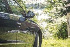 Das Auto trifft Natur Stockfotografie