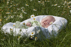 Das Baby liegt in einer Wiege Lizenzfreie Stockfotos