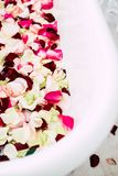 Das Badezimmer ist in einem hellen Raum, der mit Blumen und den Blumenbl?ttern von Rosen verziert wird lizenzfreies stockbild