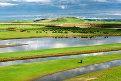 Das Baihe-Sumpfgebiet am Morgen lizenzfreies stockbild