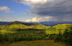 Das Bashang-Grasland Stockbild