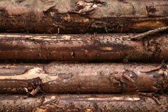Das Bauholz Stockbild