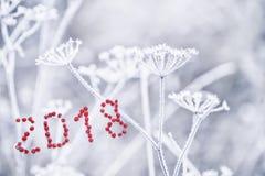 Das ` Beeren der Aufschrift rote 2018 ` Lizenzfreie Stockfotos