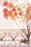 Das befleckte Ahornholz und -park gestalten - grafische Malereibeschaffenheit landschaftlich Stockfotografie