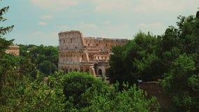 Das berühmte Colosseum in Rom Im Vordergrund gibt es grüne Bäume Sommer in Rom stock footage