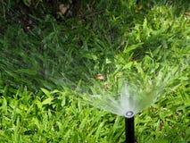 Das Berieselungsanlagenspritzwasser im Garten Stockbild