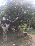 Das Bienenhaus im Dorf stockfoto