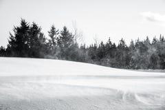 Das Bild des Winters Lizenzfreies Stockfoto