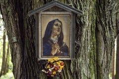 Das Bild von Madonna mit Blume auf Baum im Wald Lizenzfreie Stockfotos