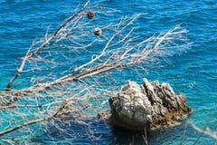 Das blaue Meer und die Küstenfelsen Stockbilder
