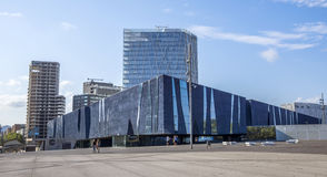 Das blaue Museum von Barcelona Lizenzfreies Stockfoto