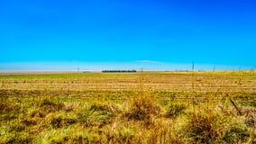 Das breite offene Ackerland entlang dem R39 in der Vaal-Flussregion von Süd-Mpumalanga Lizenzfreies Stockbild