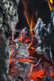 Das brennende Feuer auf Holzkohle Stockfoto