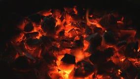 Das brennende Feuer und die roten Holzkohlen stock video