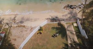 Das Brummen, das vorwärts über kleines idyllisches tropisches Erholungsorthaus fliegt, verbinden zum Seeufer langsam gehen, das d stock video