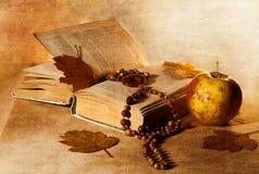 Das Buch, die Korne, die Blätter und der Apfel auf einem Gewebe Stockbilder